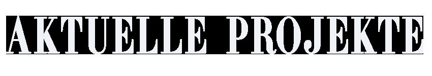 AKTUELLE-WEBDESIGN-PROJEKTE